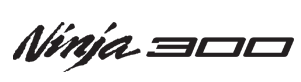 Ninja 300 Logo