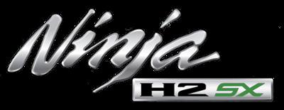 H2 SX Logo